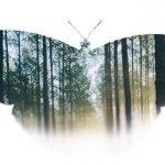 Realtà Virtuale tra sensibilizzazione ed empatia: un progetto di Uqido e WWF