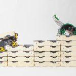 Dove natura e tecnologia si incontrano: robotica bio-ispirata, growing robots, soft robots